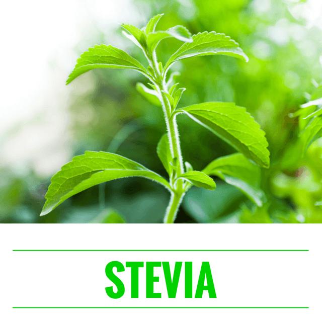 Stevia - det naturlige sødemiddel