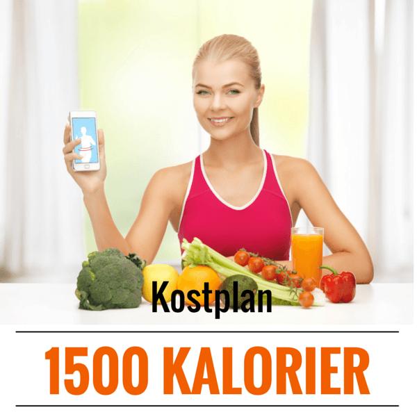 kostplan 1500 kalorier